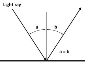 diagram of light rays bouncing on mirror